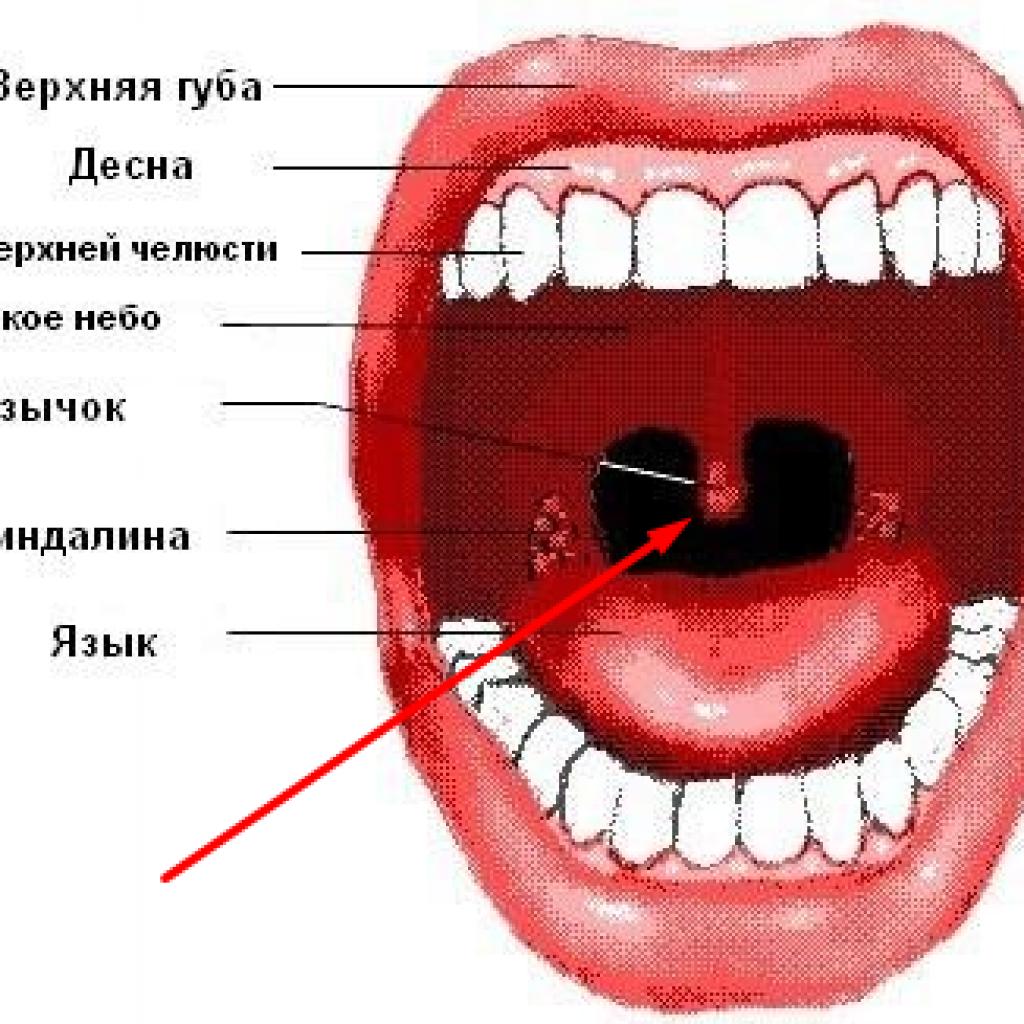 Контроль внутреннего диалога - техника остановки внутреннего диалога SecretBlog.ru - открыто о скрытном